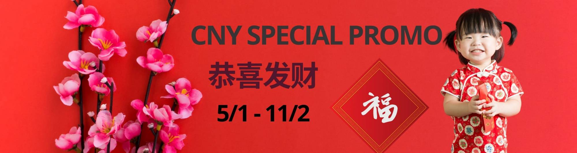 Wholesome Living Chinese New Year Special